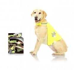 Pawise - 12002 Pawise Safety Vest Köpek Yeleği M
