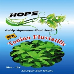 Fatih-Pet - Akvaryum Bitki Tohumu Tonina Fluviatilis 12 li