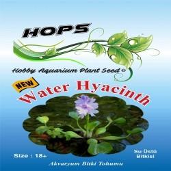 Fatih-Pet - Akvaryum Bitki Tohumu Water Hyacinth 12 li