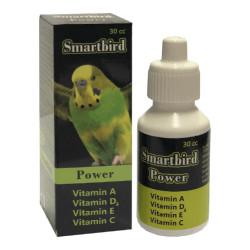 Smartbird - Smartbird Power Kuş A Vitamin Takviyesi 30cc/6 lı